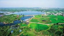 人民日报:海口湿地 绿沁于心