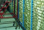 国家作物种质库新库拟3月开建 设计容量达150万份
