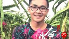 """奮斗在海南 不負青春丨周華龍:""""網紅""""帶貨 帶入田間地頭"""