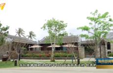 博鳌亚洲论坛主题公园:二十载相守绘就命运共同体靓丽画卷