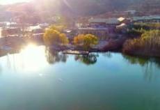 湖北省保康县两峪村:小小蓝莓打开致富门路