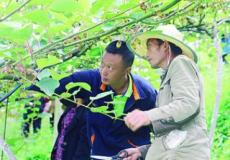 中国全面消除绝对贫困:谱写人类反贫困历史恢宏篇章