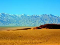 从海拔1000米到8000米的2018——青藏高原上三位年青人的故事