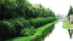 生态环境质量持续改善 美丽中国建设日新月异