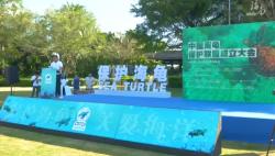 世界海龟日:中国海龟保护联盟在三亚成立