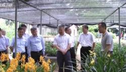 沈晓明在省农科院调研时强调 以科技创新支撑海南农业高质量发展