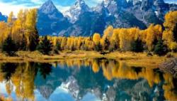 人民日报:靠山吃山,做足绿色大文章