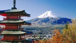 日本新語及流行語入圍名單公布 多個體壇詞語入選