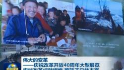 【伟大的变革——庆祝改革开放40周年大型展览】农村改革成就辉煌 菜篮子日益丰富