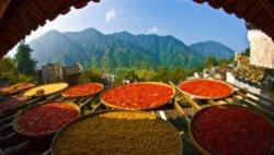 今年全国粮食总产量65789万吨 属丰收年景