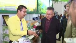 沈晓明在冬交会调研时指出 打响热带农产品品牌 做强做优特色高效农业