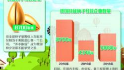 """""""中国粮主要用中国种子""""靠什么实现"""