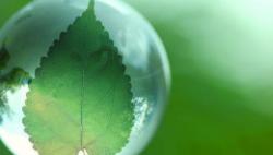 保持加强生态文明建设的战略定力
