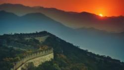 海外投资者为何持续看好中国?