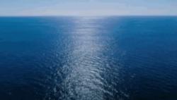 """秀出""""我的海洋STYLE?#20445;?海洋短视频大赛等你来撩"""