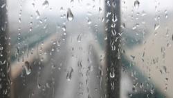 出门带伞!今日有雨来报道~未来几天的天气是......