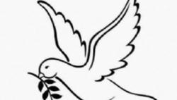 打开 友谊之旅 和平之旅 ——国?#35270;?#35770;高度评价习近平总书记对朝?#24335;?#34892;国事访问