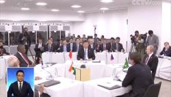 习近平出席金砖国家领导人会晤