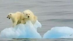 世界氣象組織:2015-2019很可能是史上最熱五年
