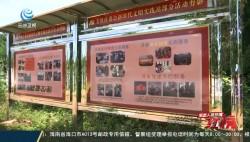 生态人居环境红榜:临高县东英镇美鳌村 推动环境治理 结合花卉产业 打造村庄新风貌