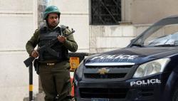 埃及:自本月25日起再次延长紧急状态3个月