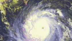 """国家防总、应急管理部派工作组协助指导地方开展台风""""利奇马""""防范应对工作"""