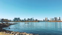 日媒:东京水质恶化 残疾人铁三世界杯中止游泳项目