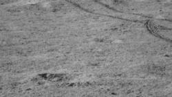 """嫦娥四号和""""玉兔二号""""被顺利唤醒 进入第九月昼"""