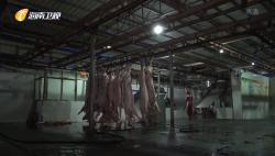 """落實""""菜籃子""""節日保供穩價 海口:全面免除生豬代宰收費 豬肉價格下調讓利于民"""