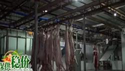 海口全面免除生猪代宰收费 猪肉价格下调让利于民