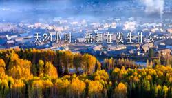 一天24小时,新疆在发生什么