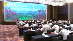王晨就海南自由贸易港法进行立法调研时强调:为海南自由贸易港建设提供有力法治保障
