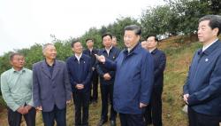 """农业强 农村美 农民富 习近平这样关心三农问题 ——写在第二个""""中国农民丰收节""""到来之际"""