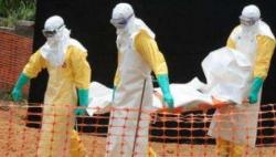 刚果(金)将引入第二种埃博拉疫苗