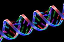 媒体曝美国政府拟采集非法移民DNA 导入FBI数据库