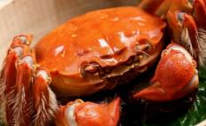 """""""纸螃蟹""""产业链调查:多方可从蟹卡蟹券中渔利"""