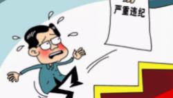三亚市人民政府原党组成员、副市长王铁明严重违纪违法被开除党籍和公职