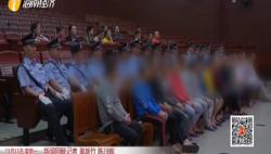 瓊海王紹鼎涉黑案一審宣判:王紹鼎犯7宗罪被判25年