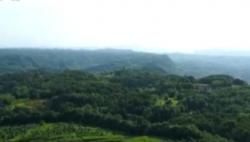 国家发展改革委:将选50个试点县开展生态综合补偿工作