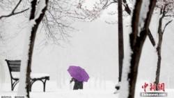 美國中部地區將迎大雪 或造成大范圍交通延誤