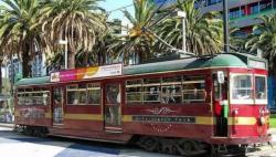 时隔近60年 悉尼有轨电车重新开通