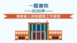 来啦!一图速览2020年海南省人民检察院工作报告