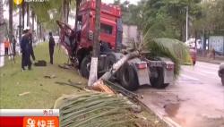 拖挂车突然冲进绿化带 当场撞断3棵椰子树