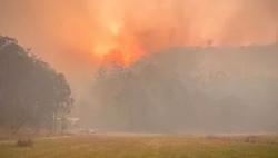 澳大利亚新州酷热干燥大风 林火威胁再次升级