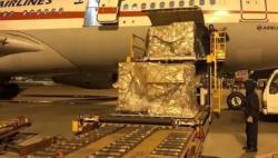 日本民间捐助的100万只防疫口罩抵蓉 紧急运往武汉