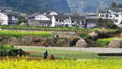习近平总书记关切事|确保不误农时,保障夏粮丰收 ——各地抓好春耕生产在行动