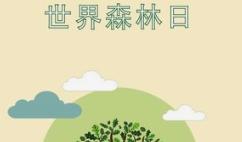 世界森林日:绿荫守护美好家园