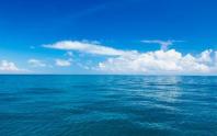 海警局:越渔船撞击中国海警船后沉没 8人被移交越方