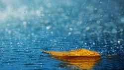 出门带伞!未来三天海南多地有雨 局地暴雨
