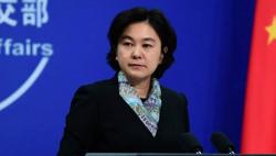 外交部:中國歡迎并決定參加世衛組織有關全球合作倡議
